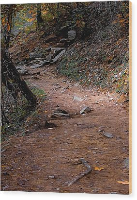Hiking Trail To Abrams Falls Wood Print by DigiArt Diaries by Vicky B Fuller