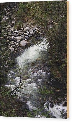 Hiking Wallace Falls#1 Wood Print