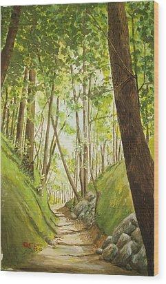 Hiling Path Wood Print by Charles Hetenyi