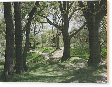 Hill 60 Cratered Landscape Wood Print