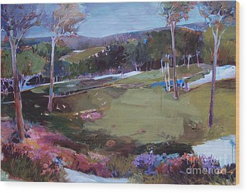 Wood Print featuring the painting Hill Country by Diane Ursin