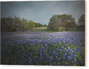 Hill Country Ranch Wood Print
