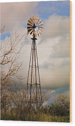 Wood Print featuring the photograph Hill Country Windmill by Michael Flood
