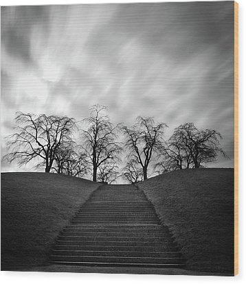 Hill, Stairs And Trees Wood Print by Peter Levi