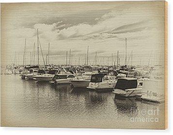 Hillarys Boat Harbour, Western Australia Wood Print by Elaine Teague