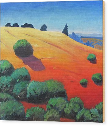 Wood Print featuring the painting Hills And Beyond by Gary Coleman
