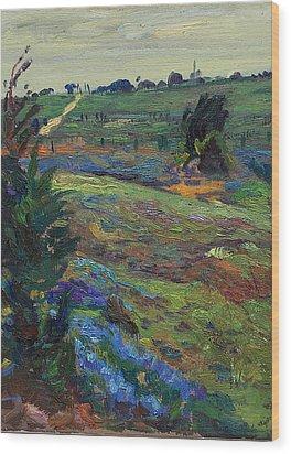 Hills Of Joy Wood Print by Maris Salmins