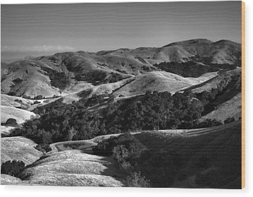 Hills Of San Luis Obispo Wood Print by Steven Ainsworth