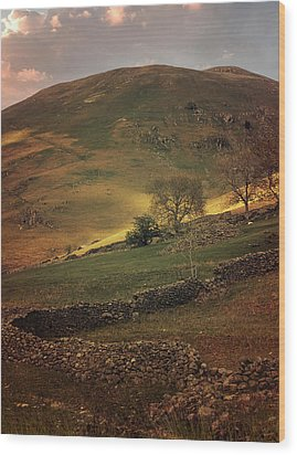 Hills Of Scotland At The Sunset Wood Print by Jaroslaw Blaminsky
