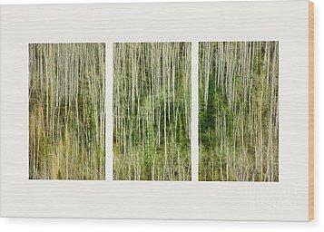 Hillside Forest Wood Print by Priska Wettstein