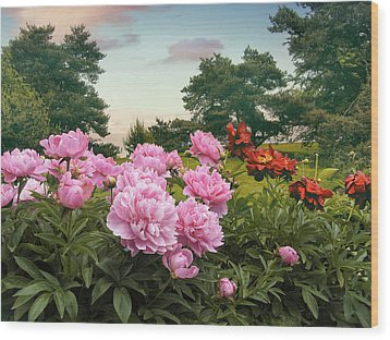 Hillside Peonies Wood Print by Jessica Jenney