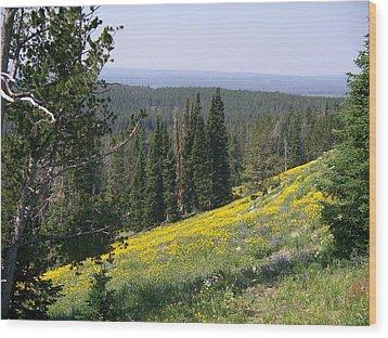 Hillside Wildflowers Wood Print by Remegio Onia