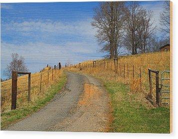 Hilltop Driveway Wood Print