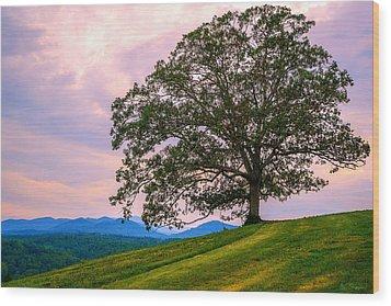 Hilltop Oak Wood Print