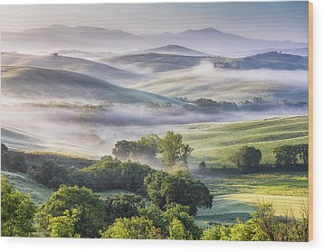 Hilly Tuscany Valley At Morning Wood Print by Evgeni Dinev