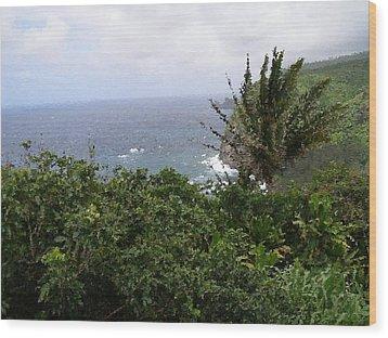 Hilo Coast Hawaii Wood Print by Don Phillips