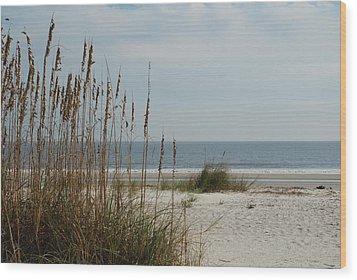 Hilton Head Beach Wood Print by Kathy Gibbons