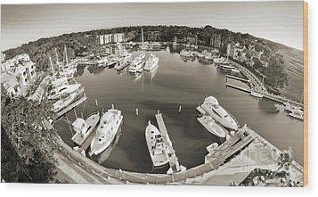 Hilton Head Harbor Town Yacht Basin 2012 Wood Print by Dustin K Ryan