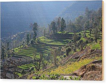 Himalayan Stepped Fields - Nepal Wood Print
