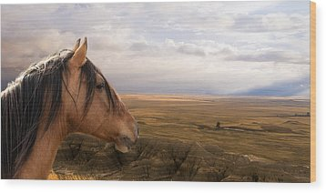 His Domain Wood Print by Ron  McGinnis