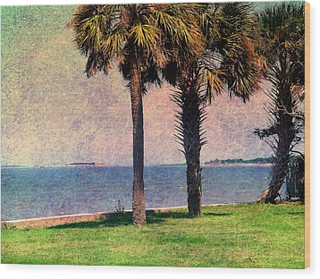 Historic Fort Sumter Charleston Sc Wood Print by Susanne Van Hulst