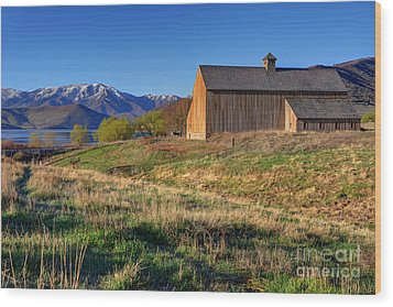 Historic Francis Tate Barn - Wasatch Mountains Wood Print