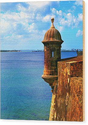 Historic San Juan Fort Wood Print by Perry Webster