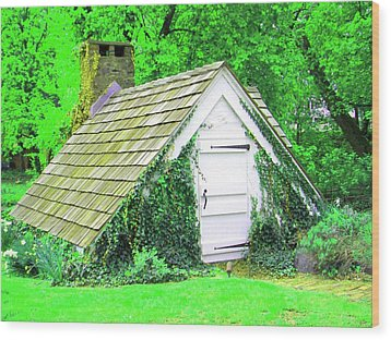 Wood Print featuring the photograph Hobbit Hut by Susan Carella