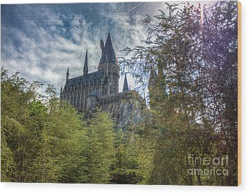 Hogwarts Castle Wood Print
