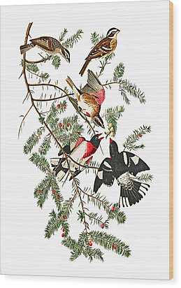 Wood Print featuring the photograph Holiday Birds by Munir Alawi
