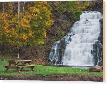 Wood Print featuring the photograph Holley Canal Falls by Mark Papke