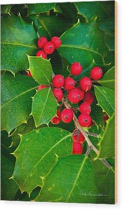 Holly 9218 Wood Print by Dan Beauvais