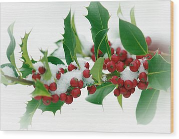 Wood Print featuring the photograph Holly Berries On White by Sharon Talson