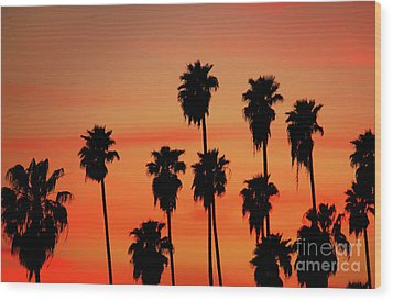 Hollywood Sunset Wood Print by Mariola Bitner