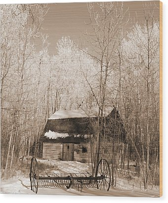 Homestead Wood Print by Pat Purdy