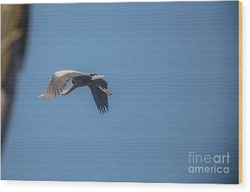 Wood Print featuring the photograph Homing Home by David Bearden