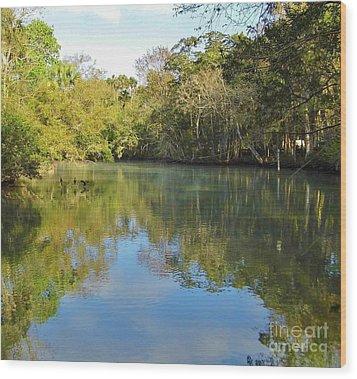 Homosassa River Wood Print