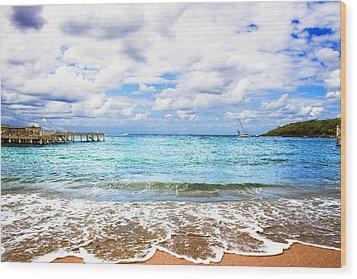 Honduras Beach Wood Print by Marlo Horne