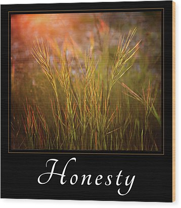 Wood Print featuring the photograph Honesty by Mary Jo Allen