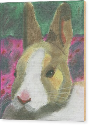 Honey Bunny Wood Print