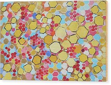 Honeycomb 201755 Wood Print by Alyse Radenovic
