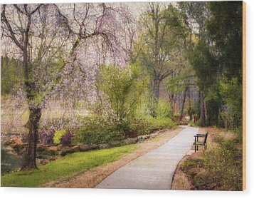 Wood Print featuring the photograph Honor Heights Pathway by James Barber