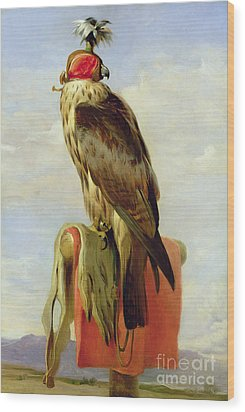 Hooded Falcon Wood Print by Sir Edwin Landseer