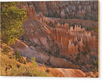 Wood Print featuring the photograph Hoodoos At Sunrise by Stephen  Vecchiotti