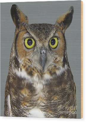 Hoot-owl - I'm Looking At You Wood Print by Merton Allen