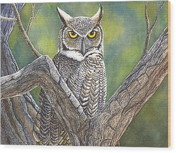 Hooter Wood Print by Catherine G McElroy