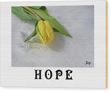 Wood Print featuring the photograph Hope by Traci Cottingham