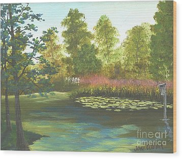 Hopeland Gardens Duck Pond Wood Print