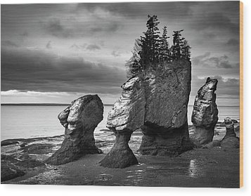 Wood Print featuring the photograph Hopewell Rocks by Patrick Downey