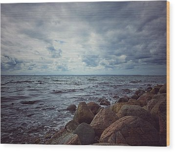 Wood Print featuring the photograph Horizon by Karen Stahlros